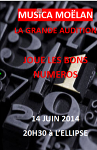 affiche audition 2014